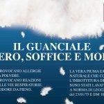 Plumex_Maggio2012_Guanciale-PIUMIA-050-E-PIUMINO-i-1-2.jpg